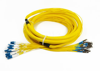 24 Core Distribution Jumper Optical Fiber Patch Cord , Fiber Optic Patch Cords